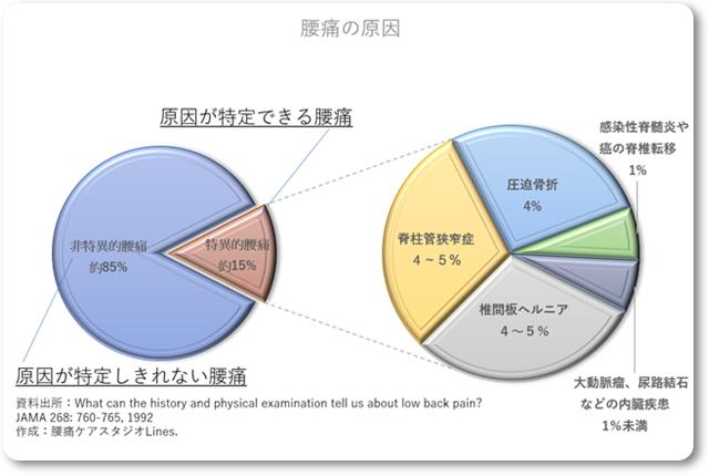 腰痛の原因を示すグラフ